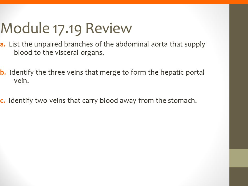Module 17.19 Review a. List the unpaired branches of the abdominal aorta that supply blood to the visceral organs. b. Identify the three veins that me