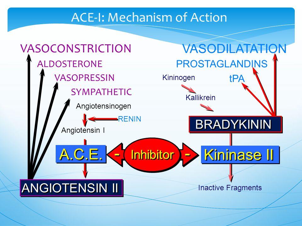 VASOCONSTRICTION VASODILATATION Kininogen Kallikrein Inactive Fragments Angiotensinogen Angiotensin I RENIN Kininase II Inhibitor ALDOSTERONE SYMPATHETIC VASOPRESSIN PROSTAGLANDINS tPA ANGIOTENSIN II BRADYKININ ACE-I: Mechanism of Action A.C.E.