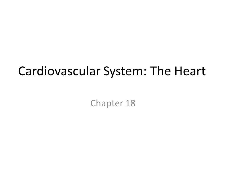 Cardiovascular System: The Heart Chapter 18