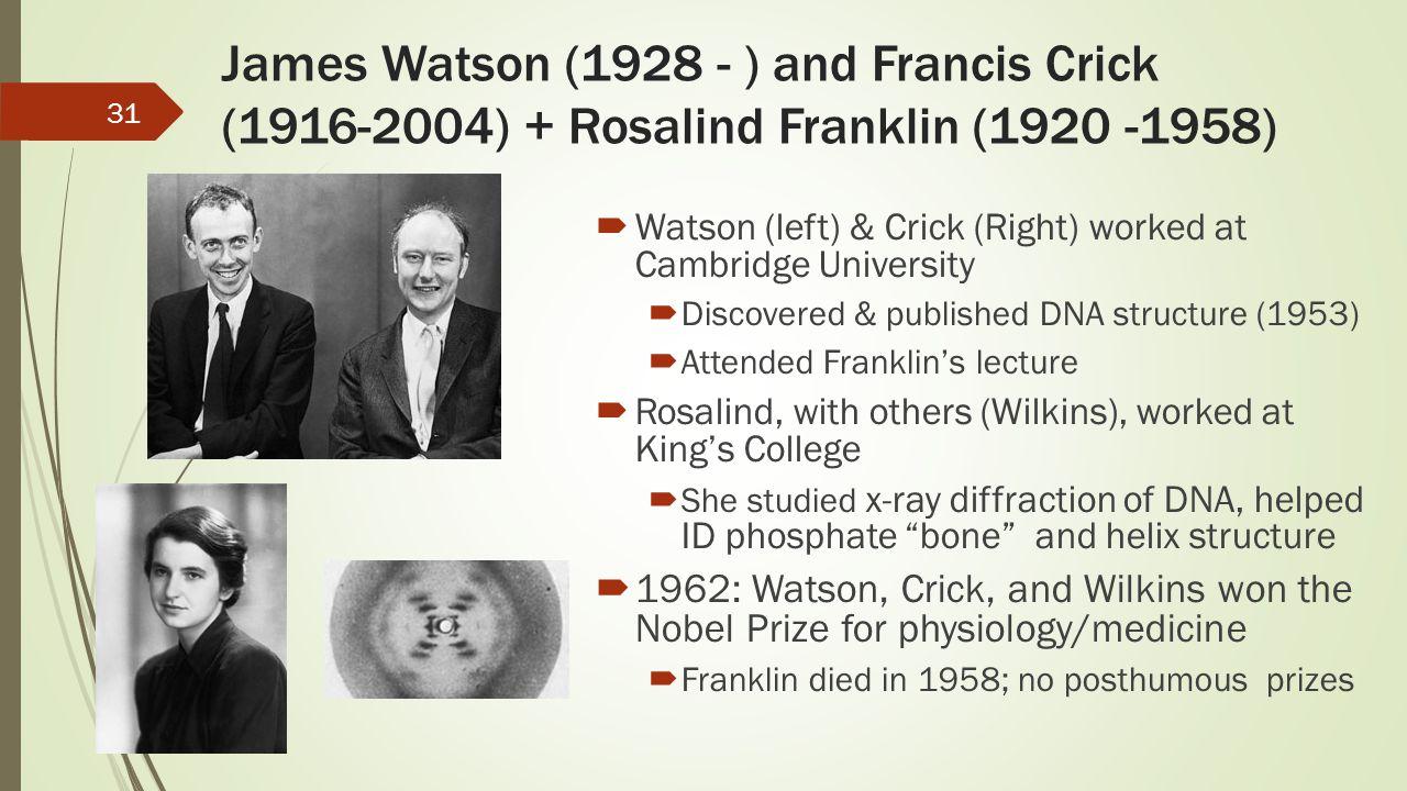James Watson (1928 - ) and Francis Crick (1916-2004) + Rosalind Franklin (1920 -1958)  Watson (left) & Crick (Right) worked at Cambridge University 