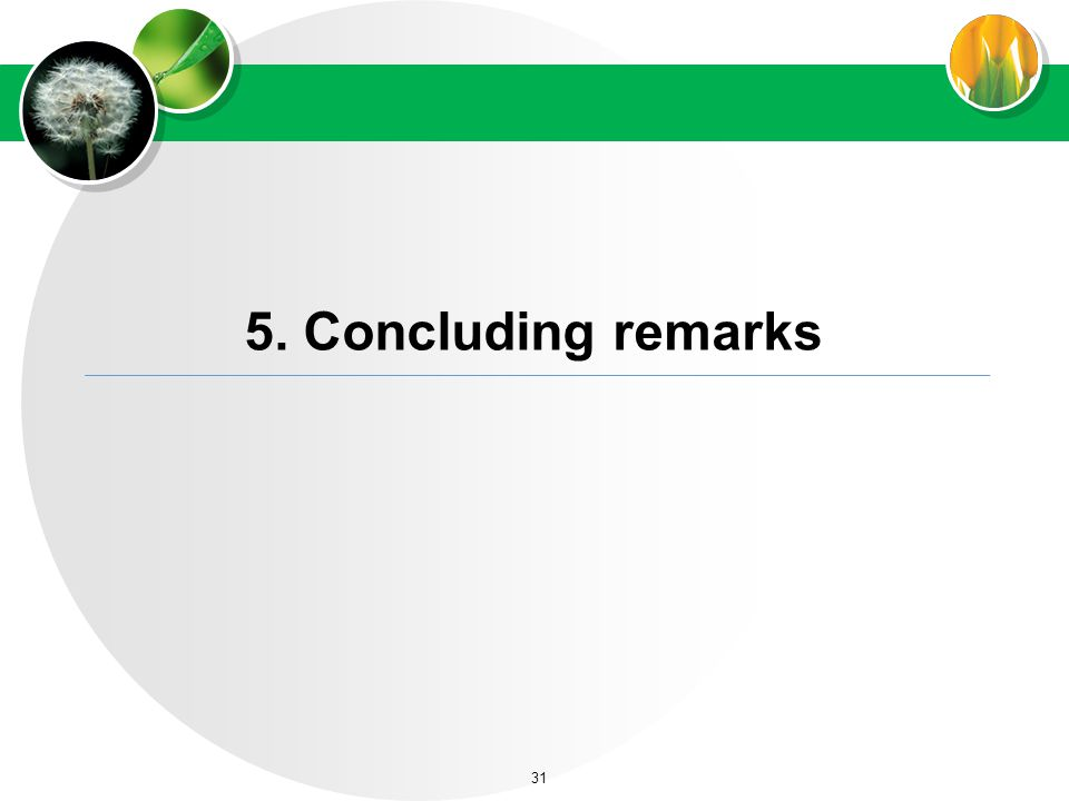 5. Concluding remarks 31