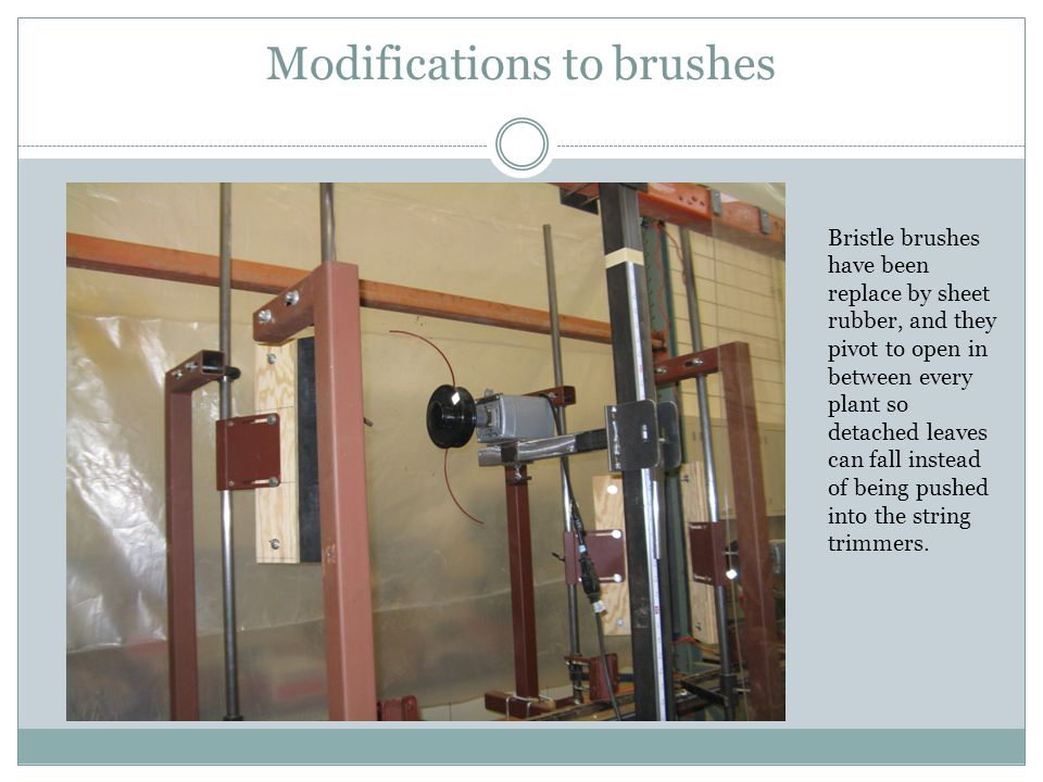 Modifications to brushes Bristle brushes have been replace by sheet rubber, and they pivot to open in between every plant so detached leaves can fall instead of being pushed into the string trimmers.