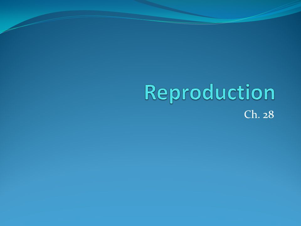 Review Describe various methods of birth control.