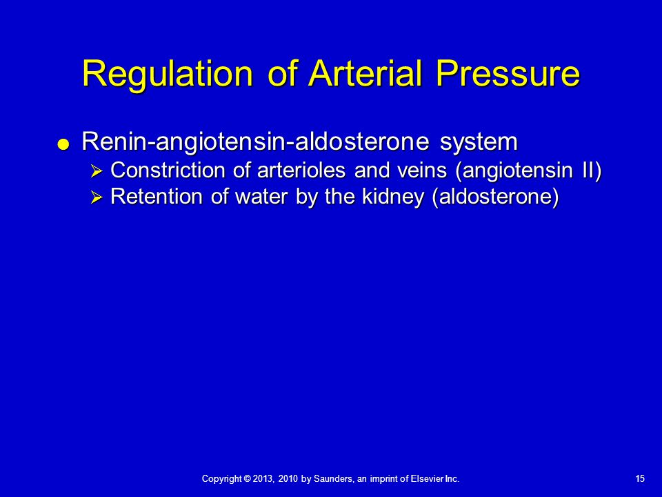 15Copyright © 2013, 2010 by Saunders, an imprint of Elsevier Inc. Regulation of Arterial Pressure  Renin-angiotensin-aldosterone system  Constrictio