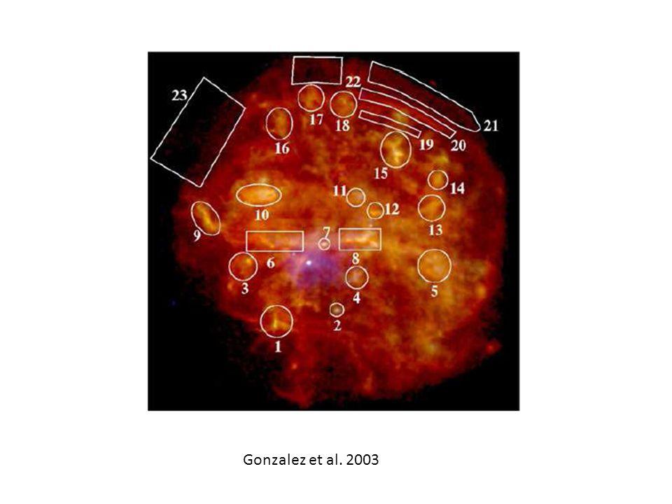 Gonzalez et al. 2003