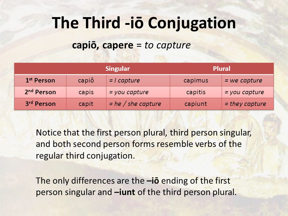 The Third -iō Conjugation capiō, capere = to capture Notice that the first person plural, third person singular, and both second person forms resemble verbs of the regular third conjugation.