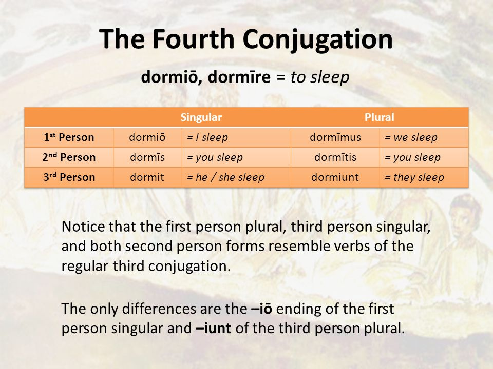 The Fourth Conjugation dormiō, dormīre = to sleep Notice that the first person plural, third person singular, and both second person forms resemble verbs of the regular third conjugation.