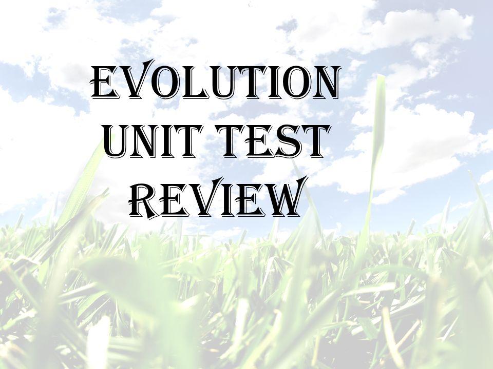 Evolution Unit Test Review