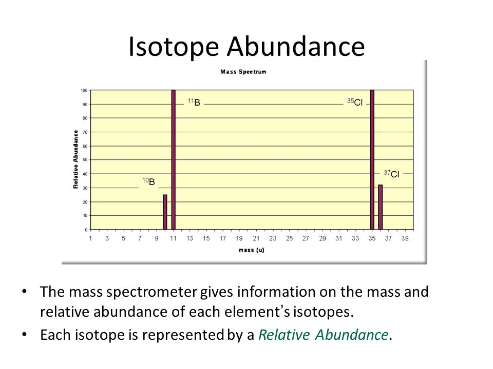 The mass spectrometer gives information on the mass and relative abundance of each element's isotopes. Each isotope is represented by a Relative Abund