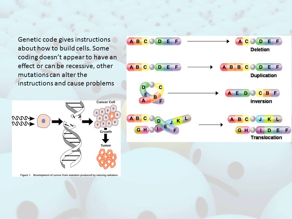 Genetic code gives instructions about how to build cells.