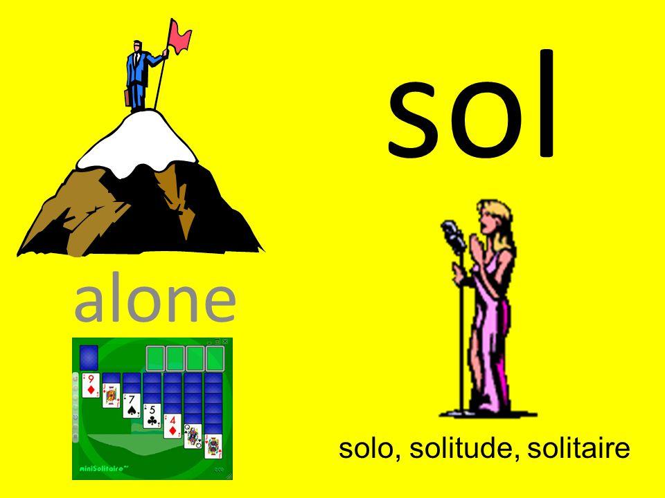 sol alone solo, solitude, solitaire