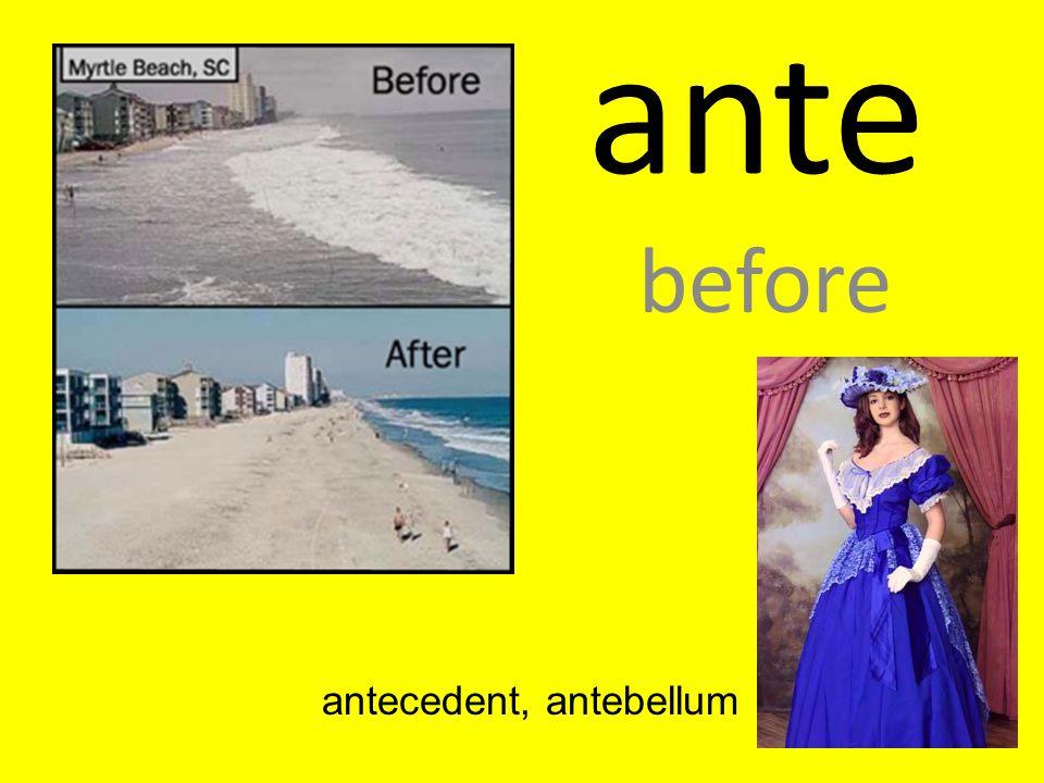 ante before antecedent, antebellum