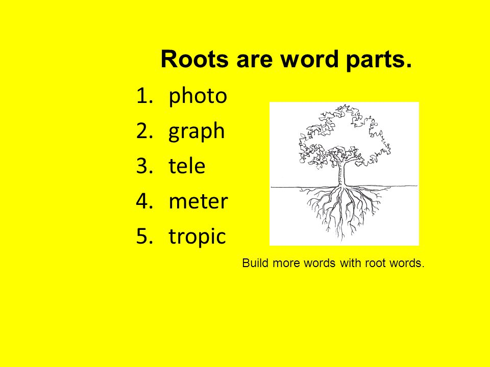 1.photo 2.graph 3.tele 4.meter 5.tropic Roots are word parts. Build more words with root words.