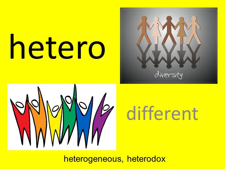 hetero different heterogeneous, heterodox