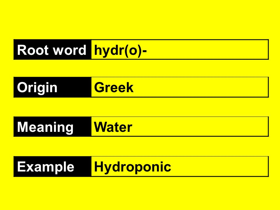 Root wordhydr(o)- OriginGreek MeaningWater ExampleHydroponic