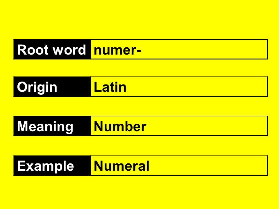 Root wordnumer- OriginLatin MeaningNumber ExampleNumeral