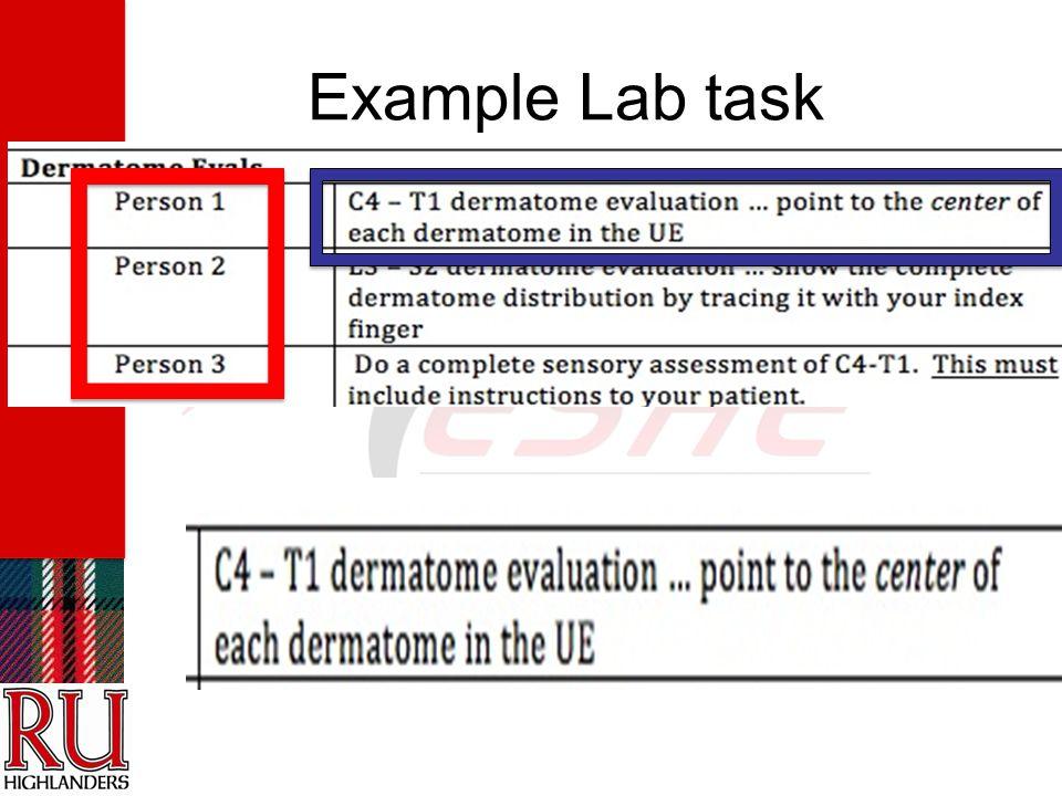 Example Lab task