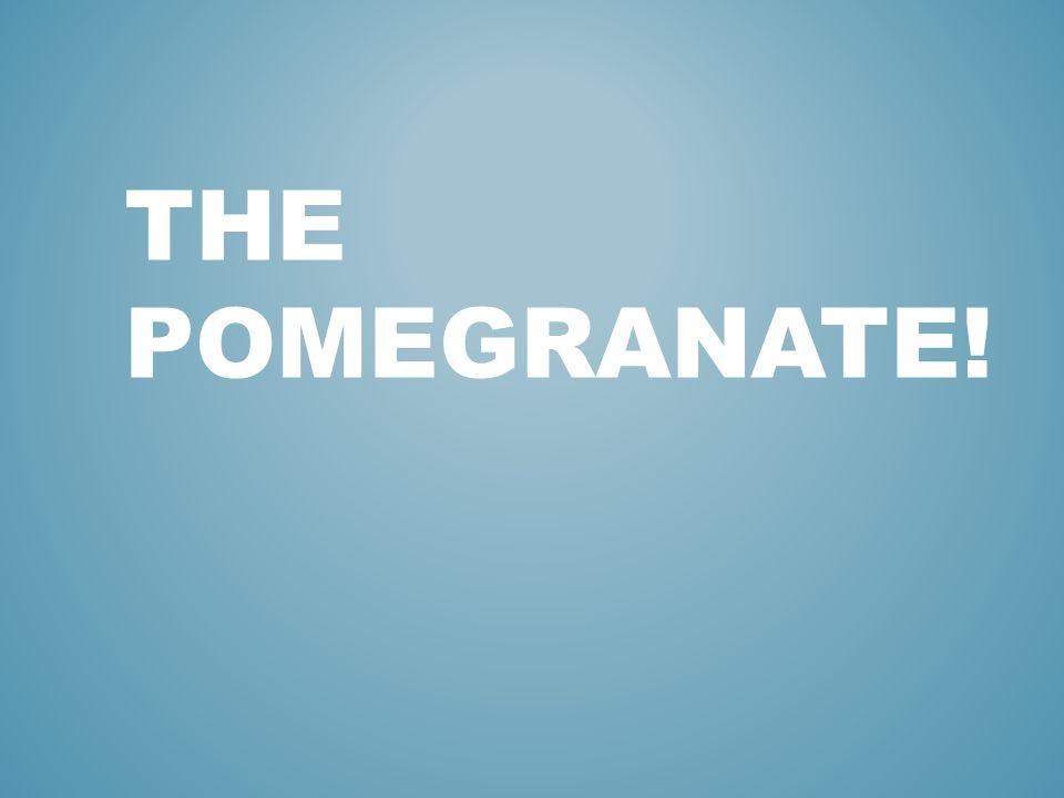 THE POMEGRANATE!