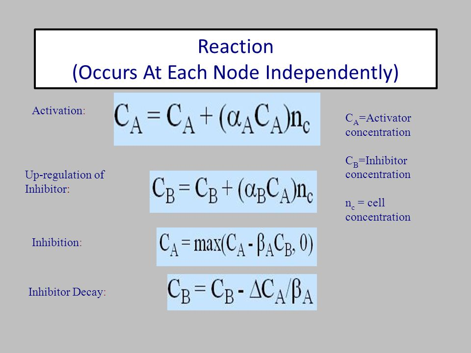 Activation: Inhibition: Up-regulation of Inhibitor: Inhibitor Decay: C A =Activator concentration C B =Inhibitor concentration n c = cell concentratio