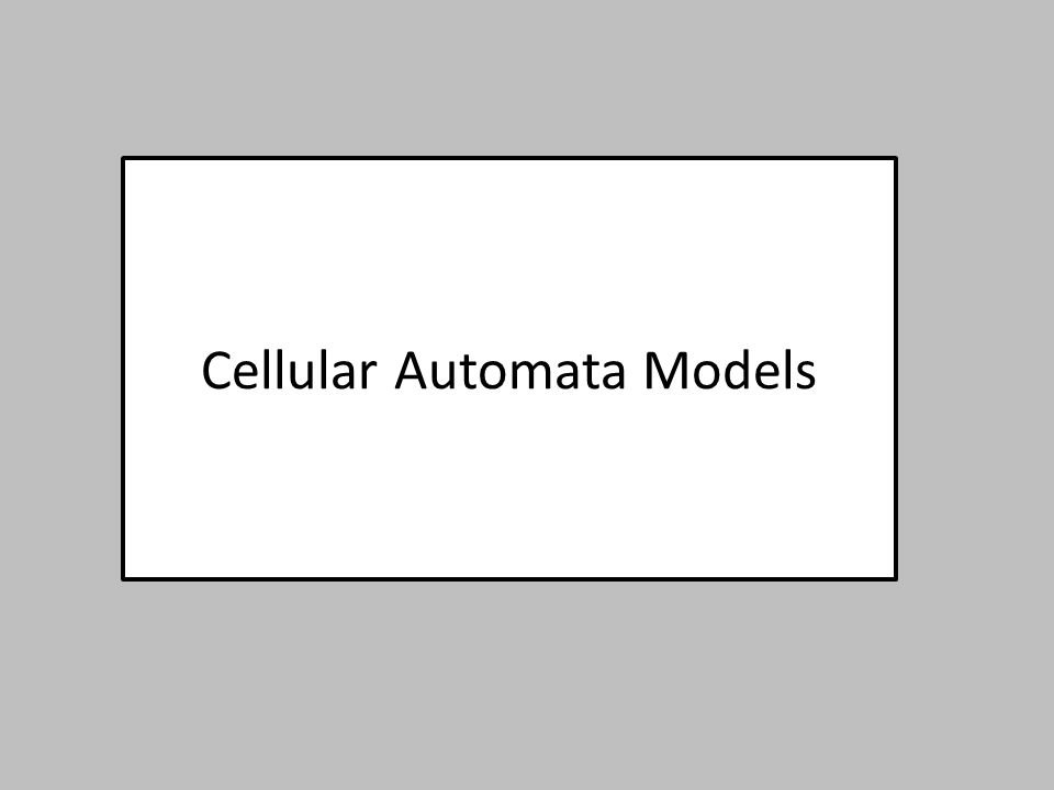 Cellular Automata Models