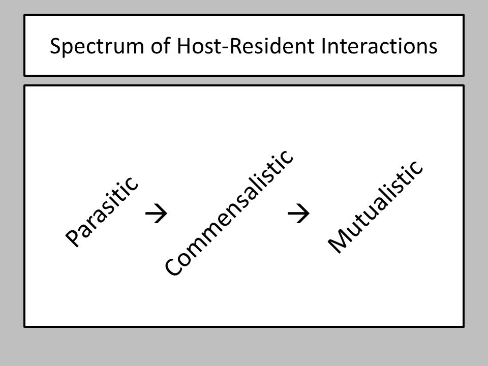 Spectrum of Host-Resident Interactions Parasitic Mutualistic Commensalistic 