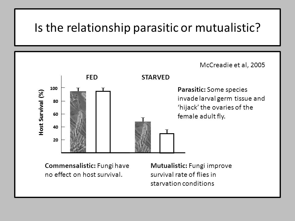 Is the relationship parasitic or mutualistic? Host Survival (%) 20 40 60 80 100 Commensalistic: Fungi have no effect on host survival. Host Survival (