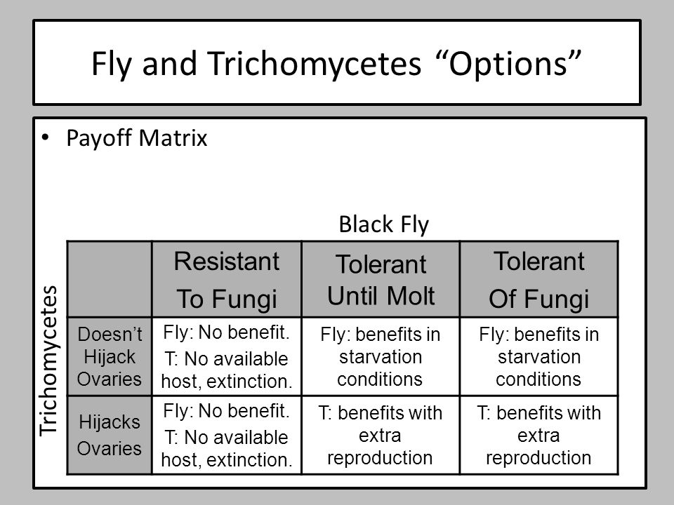 """Fly and Trichomycetes """"Options"""" Payoff Matrix Resistant To Fungi Tolerant Until Molt Tolerant Of Fungi Doesn't Hijack Ovaries Fly: No benefit. T: No a"""