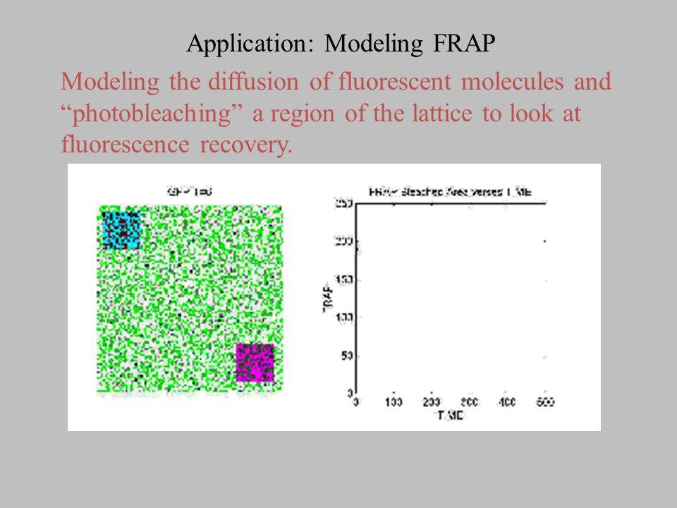 Ising Model: Ferromagnetism