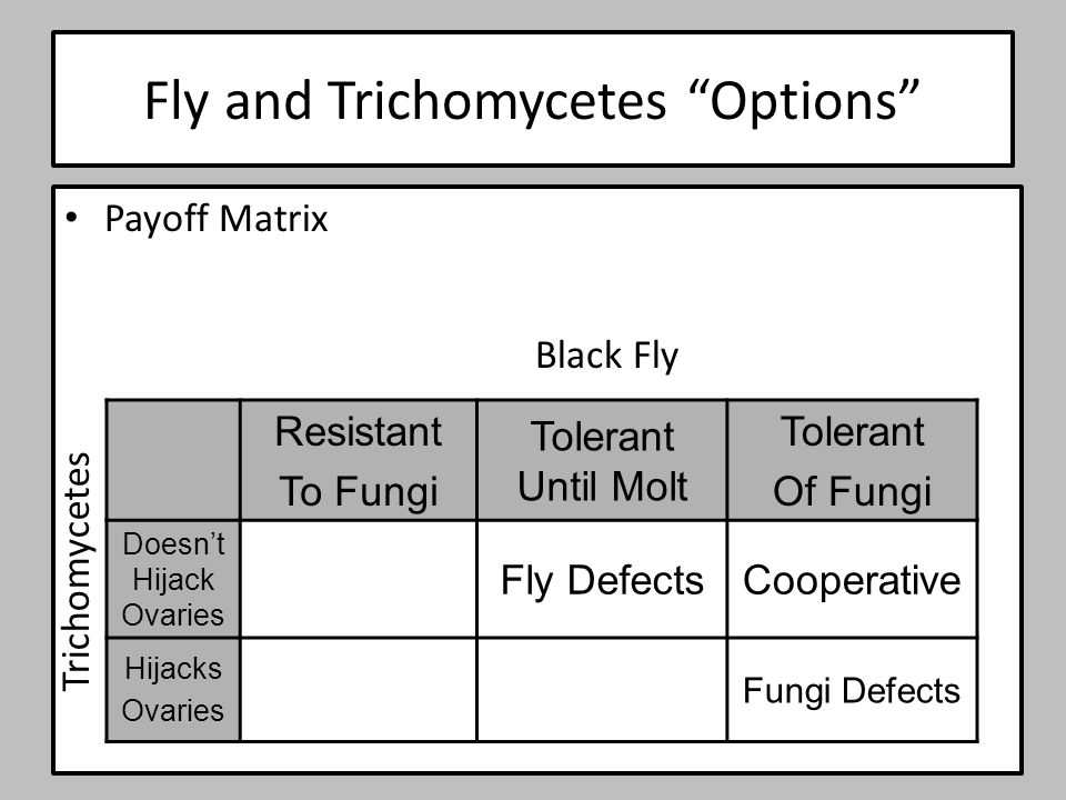 Fly and Trichomycetes Options Payoff Matrix Resistant To Fungi Tolerant Until Molt Tolerant Of Fungi Doesn't Hijack Ovaries Fly DefectsCooperative Hijacks Ovaries Fungi Defects Black Fly Trichomycetes
