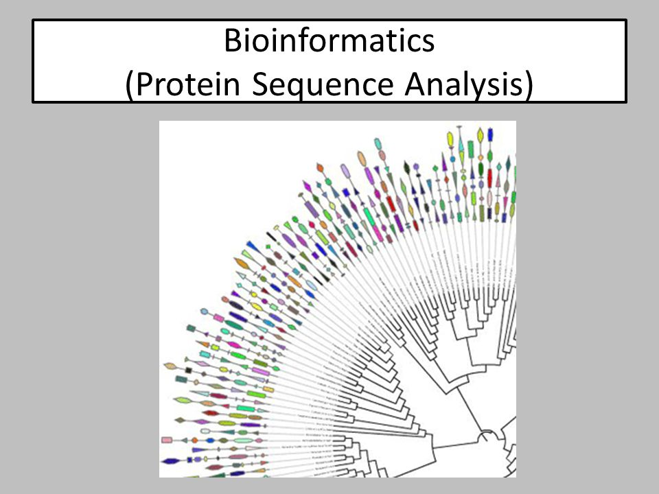 Bioinformatics (Protein Sequence Analysis)