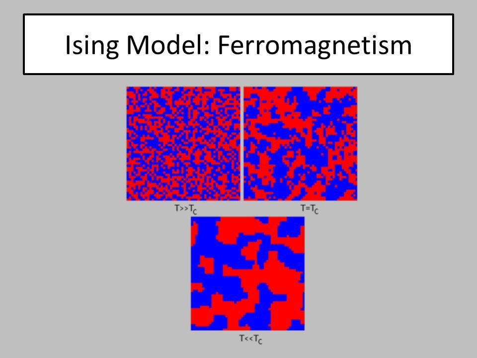 Extension: Cellular Potts Model