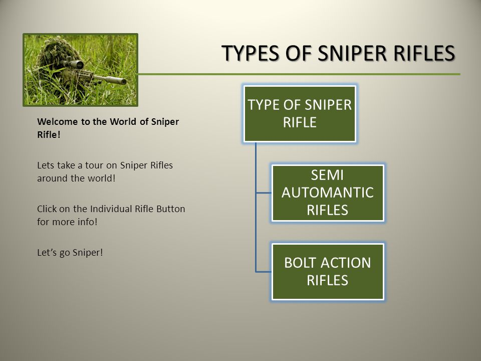TYPES OF SNIPER RIFLES Welcome to the World of Sniper Rifle! Lets take a tour on Sniper Rifles around the world! Click on the Individual Rifle Button