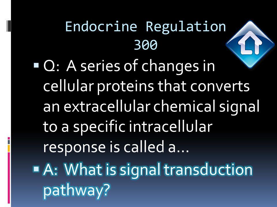 Endocrine Regulation 400