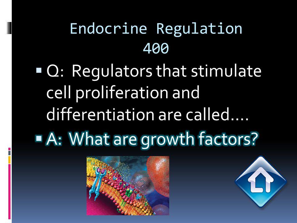 Endocrine Regulation 500