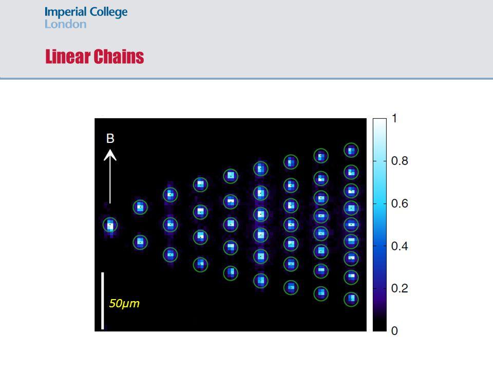 Linear Chains 50µm