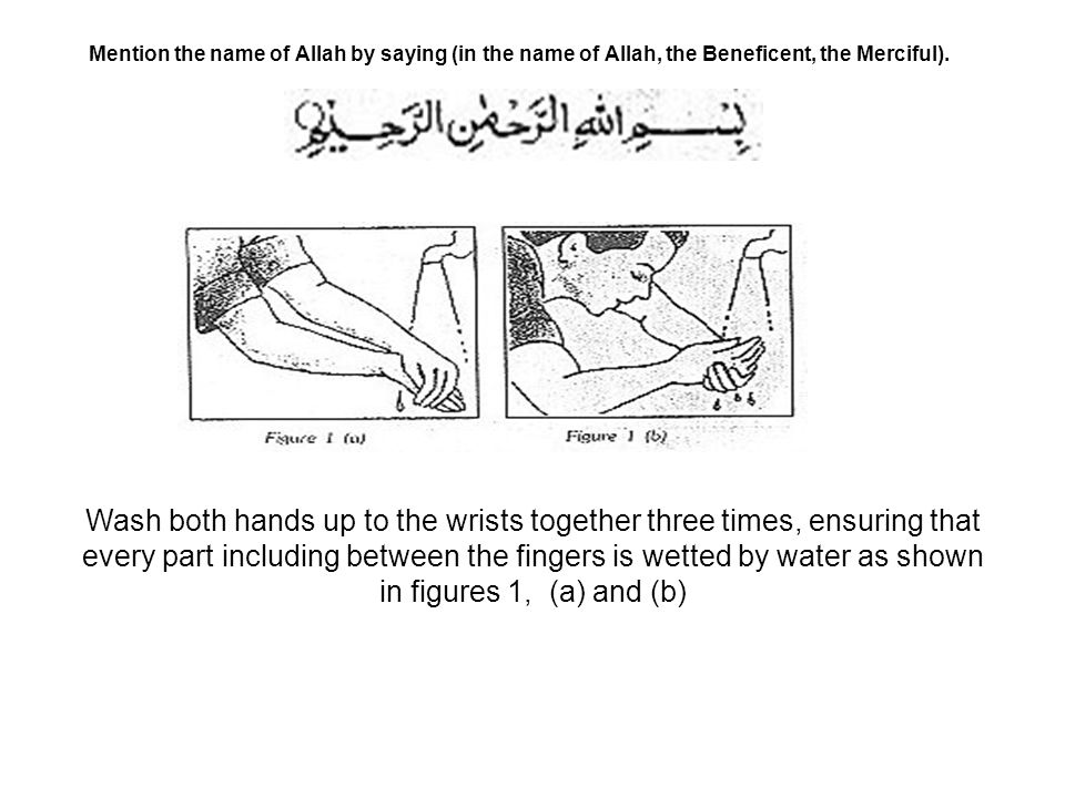 Mention the name of Allah by saying (in the name of Allah, the Beneficent, the Merciful).