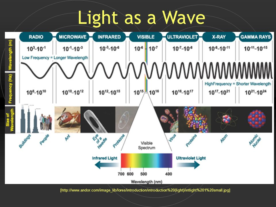 [http://www.andor.com/image_lib/lores/introduction/introduction%20(light)/intlight%201%20small.jpg] Light as a Wave