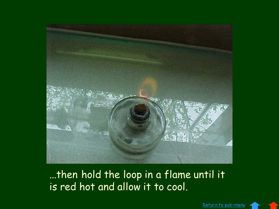 ...then hold the loop in a flame until it is red hot and allow it to cool. Return to sub-menu
