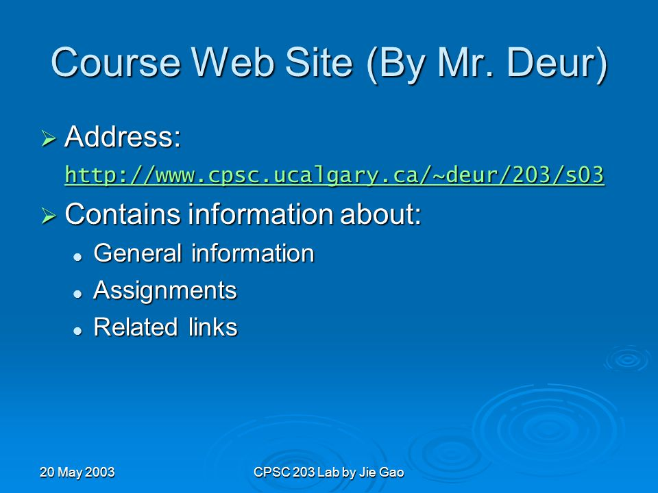 20 May 2003CPSC 203 Lab by Jie Gao Course Web Site (By Mr.