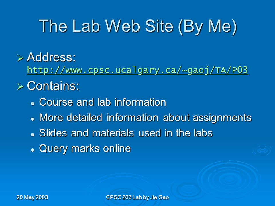 20 May 2003CPSC 203 Lab by Jie Gao The Lab Web Site (By Me)  Address: http://www.cpsc.ucalgary.ca/~gaoj/TA/P03 http://www.cpsc.ucalgary.ca/~gaoj/TA/P03  Contains: Course and lab information Course and lab information More detailed information about assignments More detailed information about assignments Slides and materials used in the labs Slides and materials used in the labs Query marks online Query marks online