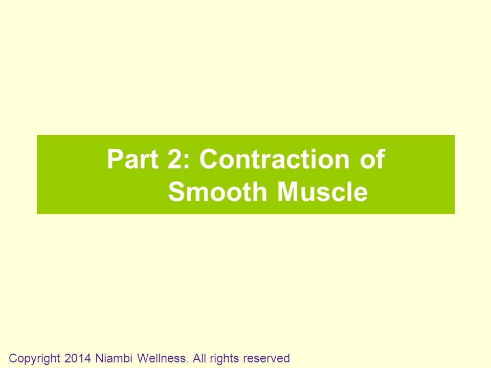 Part 2: Contraction of Smooth Muscle Copyright 2014 Niambi Wellness. All rights reserved
