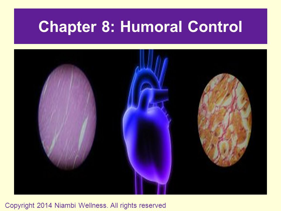 Chapter 8: Humoral Control Copyright 2014 Niambi Wellness. All rights reserved