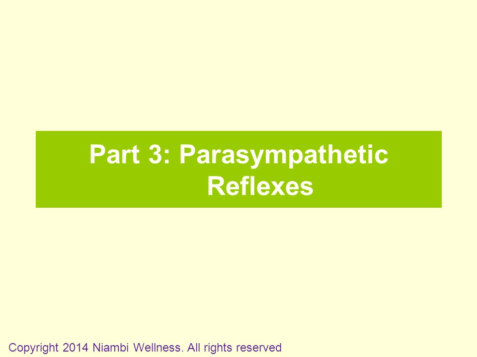 Part 3: Parasympathetic Reflexes Copyright 2014 Niambi Wellness. All rights reserved