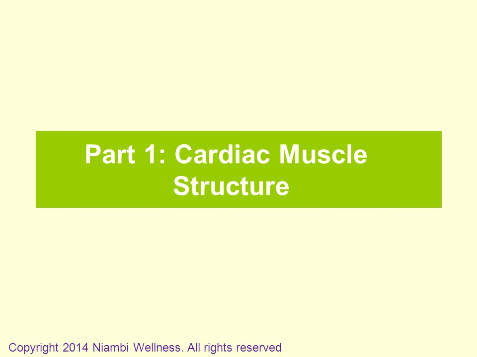 Part 1: Cardiac Muscle Structure Copyright 2014 Niambi Wellness. All rights reserved
