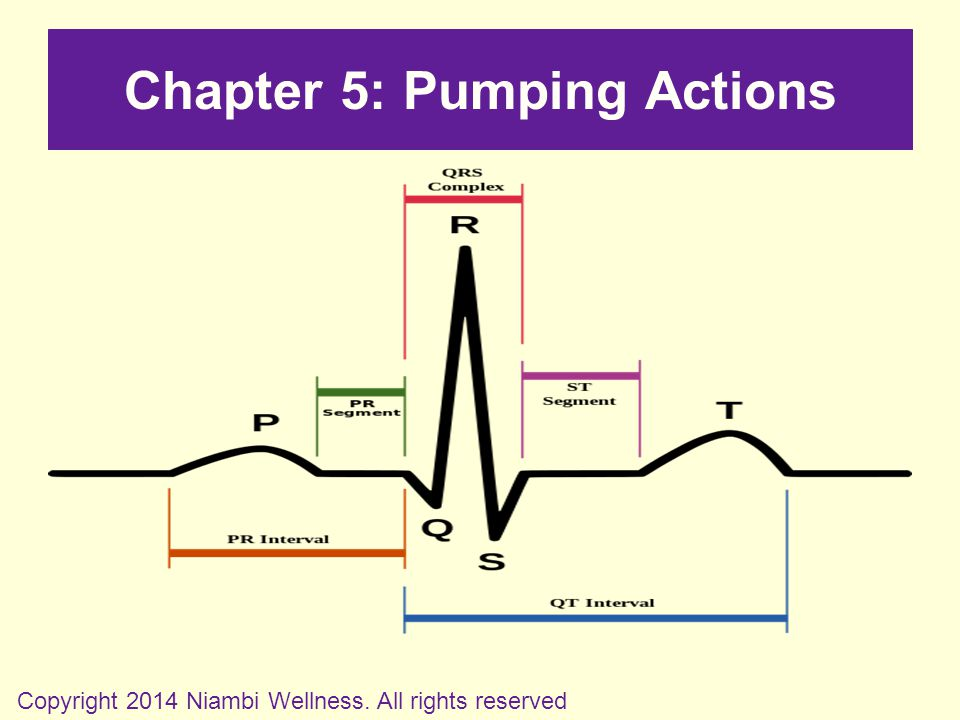 Chapter 5: Pumping Actions Copyright 2014 Niambi Wellness. All rights reserved