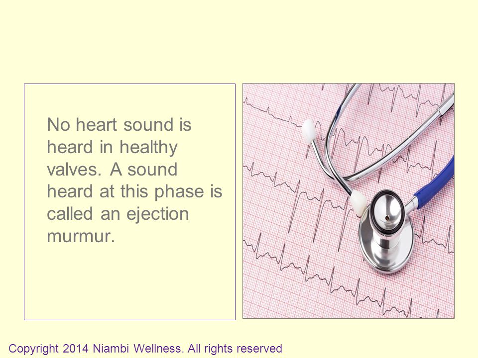 No heart sound is heard in healthy valves.