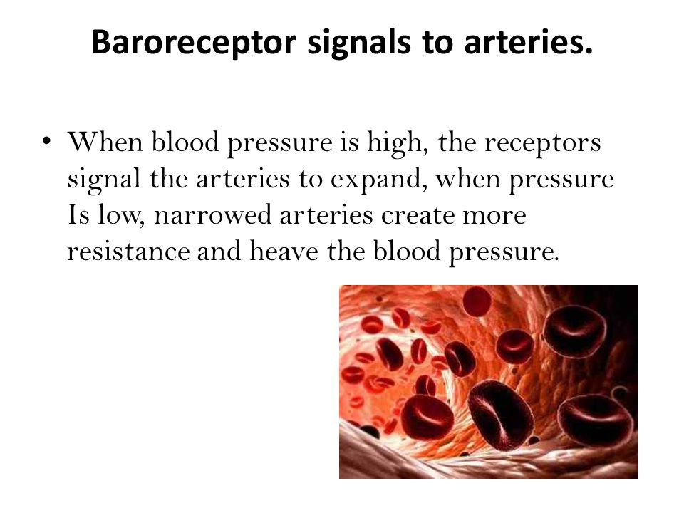 Baroreceptor signals to arteries.
