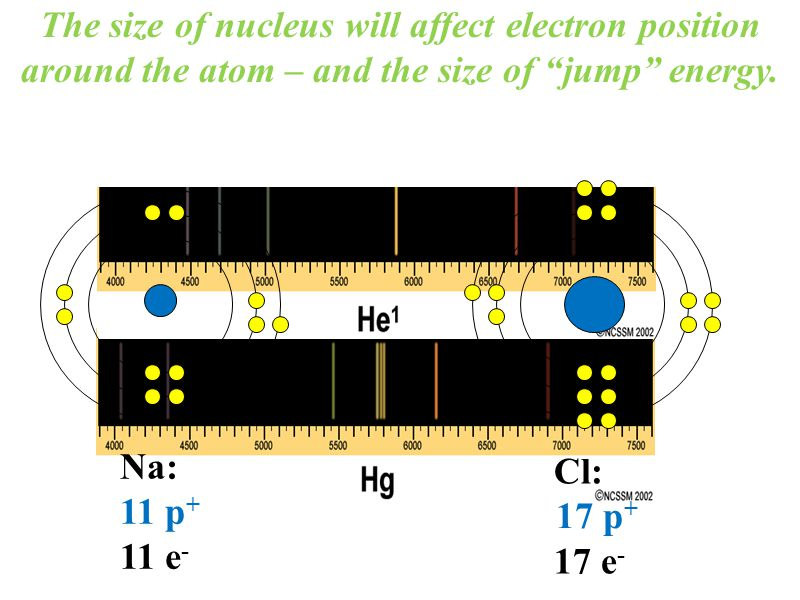 """The size of nucleus will affect electron position around the atom – and the size of """"jump"""" energy. Cl: 17 e - Na: 11 p + 11 e - 17 p +"""