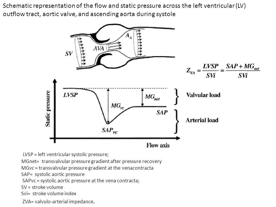 LVSP = left ventricular systolic pressure; MGnet= transvalvular pressure gradient after pressure recovery MGvc = transvalvular pressure gradient at the venacontracta SAP= systolic aortic pressure SAPvc = systolic aortic pressure at the vena contracta; SV = stroke volume Svi= stroke volume index ZVA= valvulo-arterial impedance.
