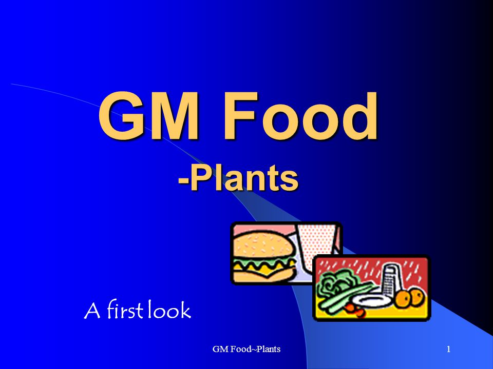 GM Food~Plants1 GM Food -Plants A first look